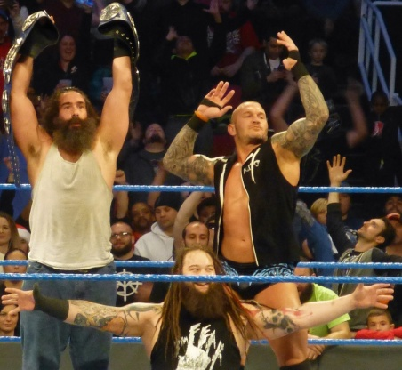 Smackdown_Tag_Team_Champions_The_Wyatt_Family