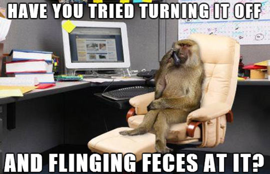 the-best-funny-pictures-of-monkey-IT-department-computer-phone