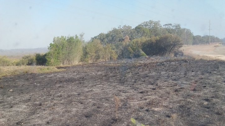 Grass fire near Gladstone